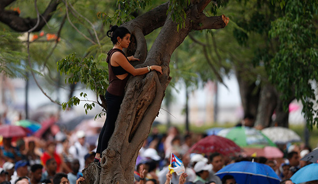 A YOUNG WOMAN WATCHES FROM A TREE AS SHE WAITS FOR POPE FRANCIS TO ARRIVE FOR A MEETING WITH YOUNG PEOPLE AT THE FATHER FELIX VARELA CULTURAL CENTER IN HAVANA SEPT. 20. (CNS PHOTO/PAUL HARING)