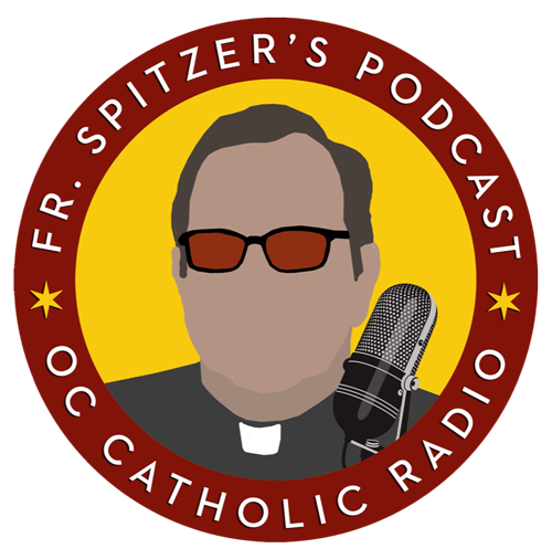 Fr. Spitzer Homilies